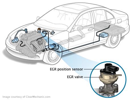 Egr Position Sensor