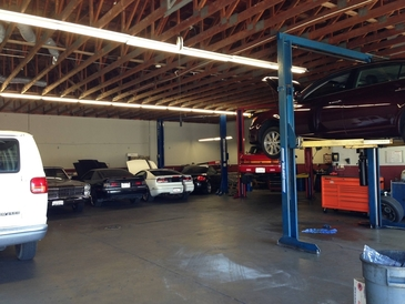 Contra Costa Auto Service - Lots of lifts and open shop space