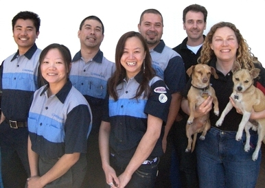 Auto Medics | Japanese Auto Repair in San Mateo - Our crew, including our official greeters Rocco & Buddy